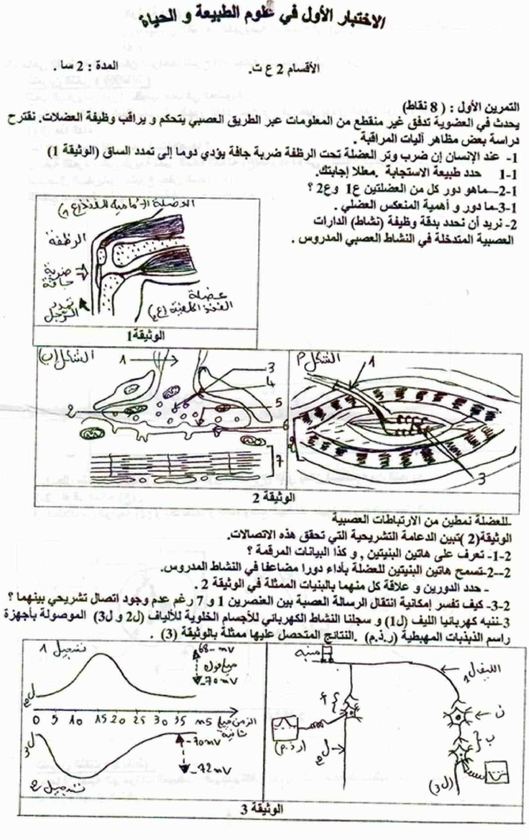 كتاب المتميز في العلوم الطبيعية للسنة الثانية ثانوي pdf
